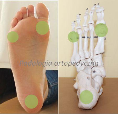 główne punkty podporu stopy